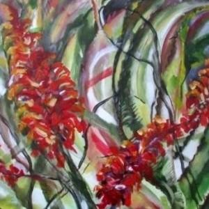 Aloe Season 2