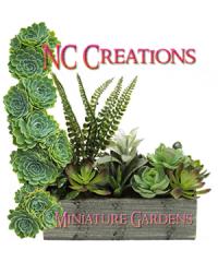 NC Creations – Miniature Gardens