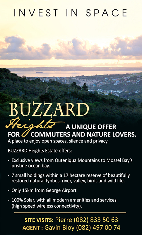 Buzzard Heights #2