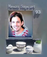 Marnitz Steyn Art